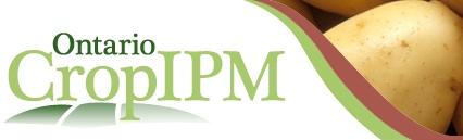 Ontario cropIPM - Potato